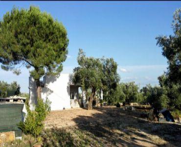 Casa VacanzeCasa vacanza in campagna vicino al mare