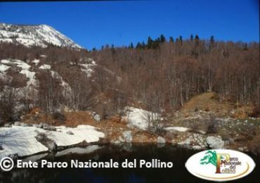 Leggi: Parco Nazionale del Pollino - Arte, Cultura e Gastronomia