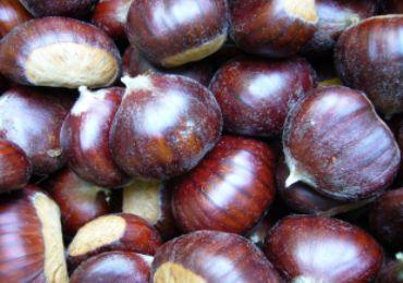 Leggi: Sagra delle castagne e Palio delle Contrade a Soriano nel Cimino