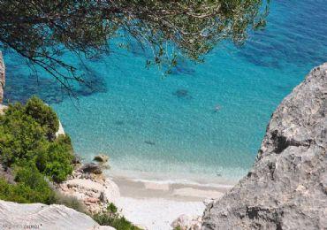 Leggi: Vacanza a Cala Gonone? Ecco cosa vedere