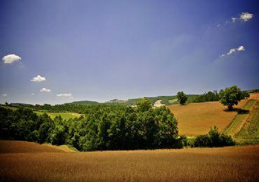 Leggi: La Maremma Toscana: un itinerario da sogno