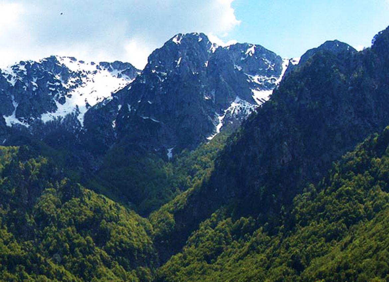 Gita al Parco Nazionale D' Abruzzo