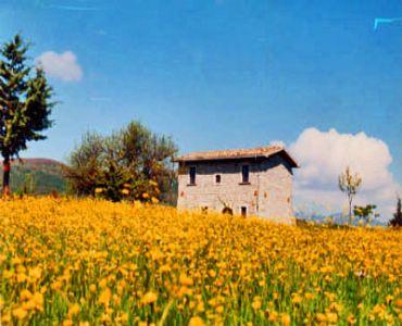 Villa VacanzeCasino Tonti Iarussi, casolare in montagna/campagna